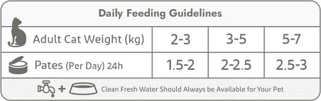 cat tins-daily feeding guidelines