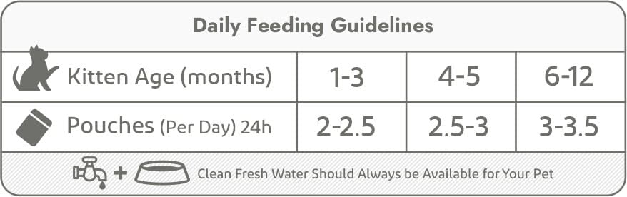 kitten pouches-daily feeding guidelines