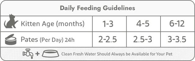 kitten tins-daily feeding guidelines